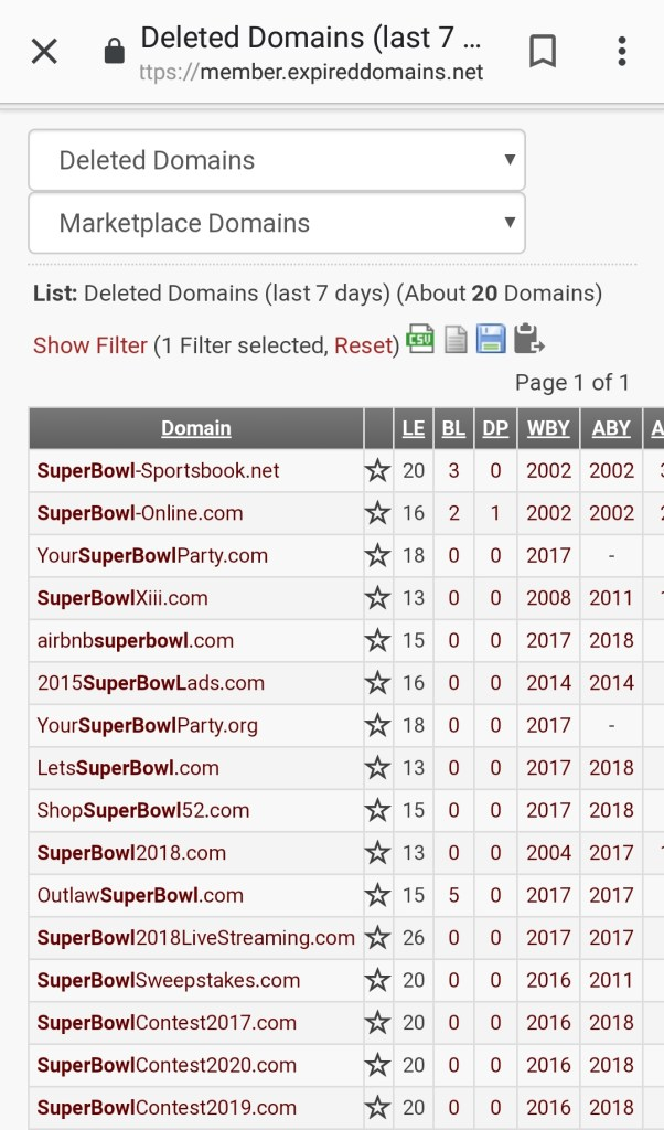 Super Bowl Infringement Deleted Domains