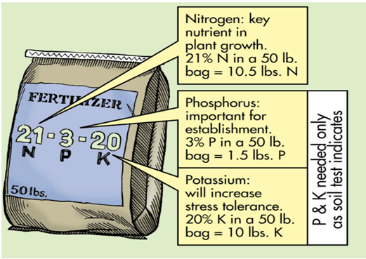 Overview Of Fertilizers