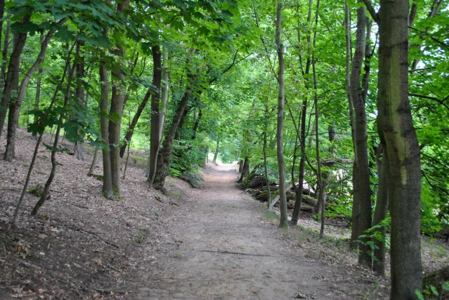 Schloss Tegel, sentiero nel parco