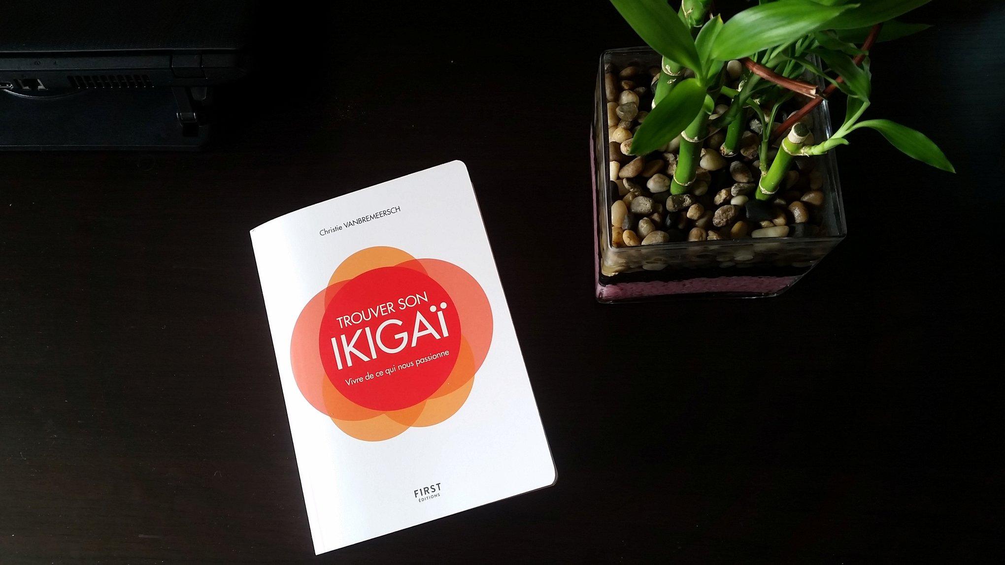 """Résumé du livre """"trouver son ikigaï"""" de Christie Vanbremeersch"""