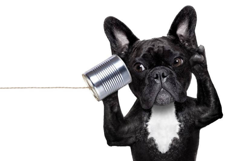 ways to really be heard