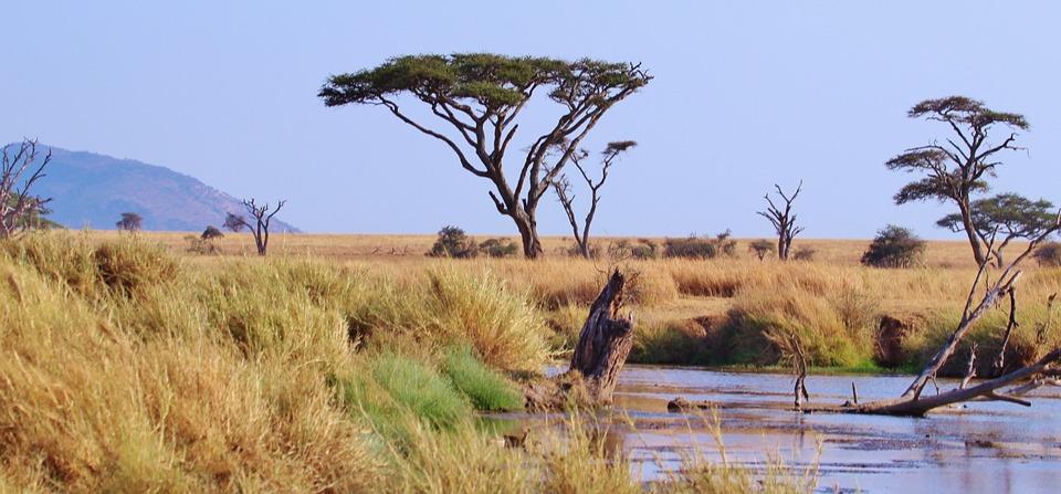Viaggiare in Tanzania: da sapere prima della partenza