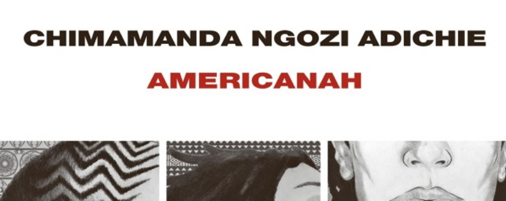 Risultati immagini per americanah libro