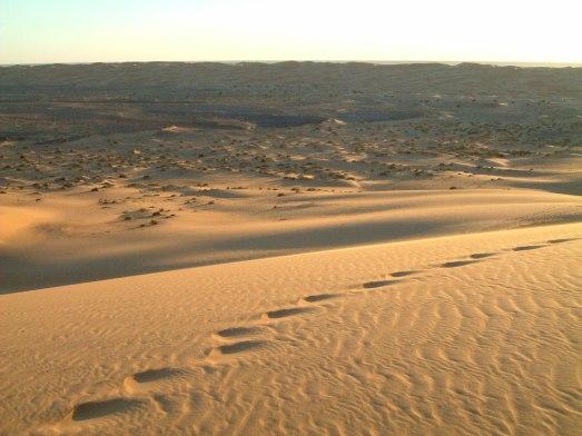 101. Grand Dune-Tingmar JPG