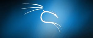 Debian и Kali Linux доступны для установки в Windows Subsystem for Linux