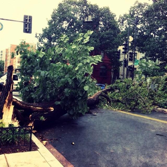 #DC#storm