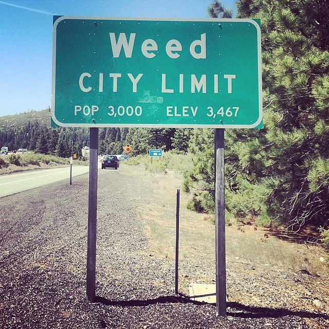 Real time! Im in Weed!