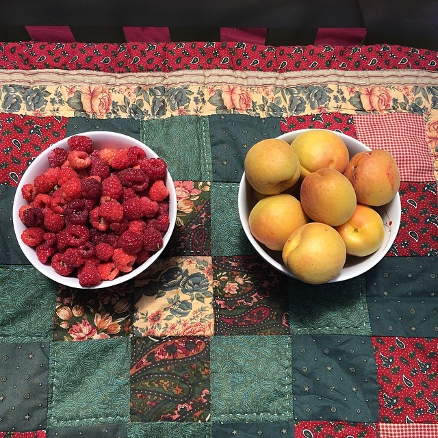Let the day start #pinole #pinolehome #garden #levasfarm #fruititup #raspberry #apricottree #apricot #nofilter