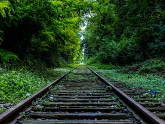 Stay On Track With Your Goals
