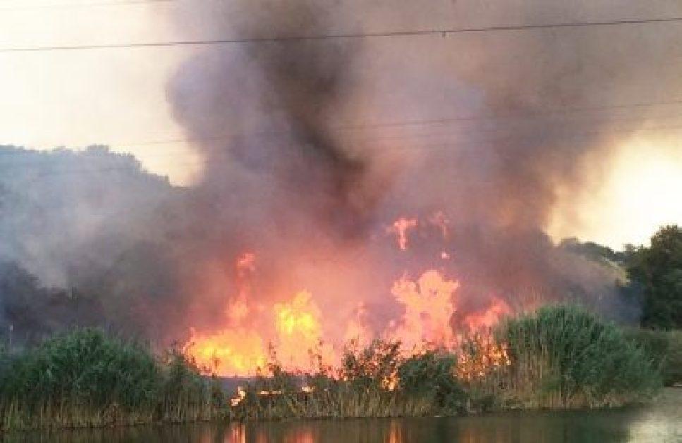 пожар за левенцовкой