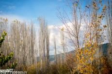 2016yds_sen6062 © LEVENT ŞEN
