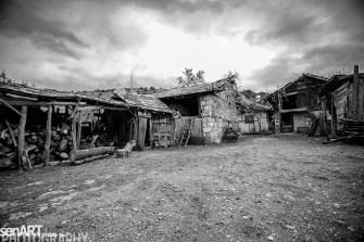 2016yds_sen6225 © LEVENT ŞEN