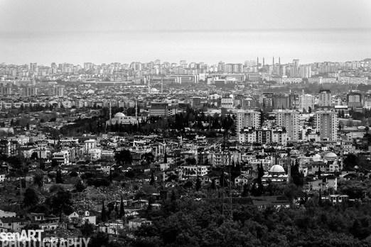 2016yds_sen6823-2 © LEVENT ŞEN