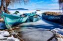 2017yds_sen_8035 © LEVENT ŞEN