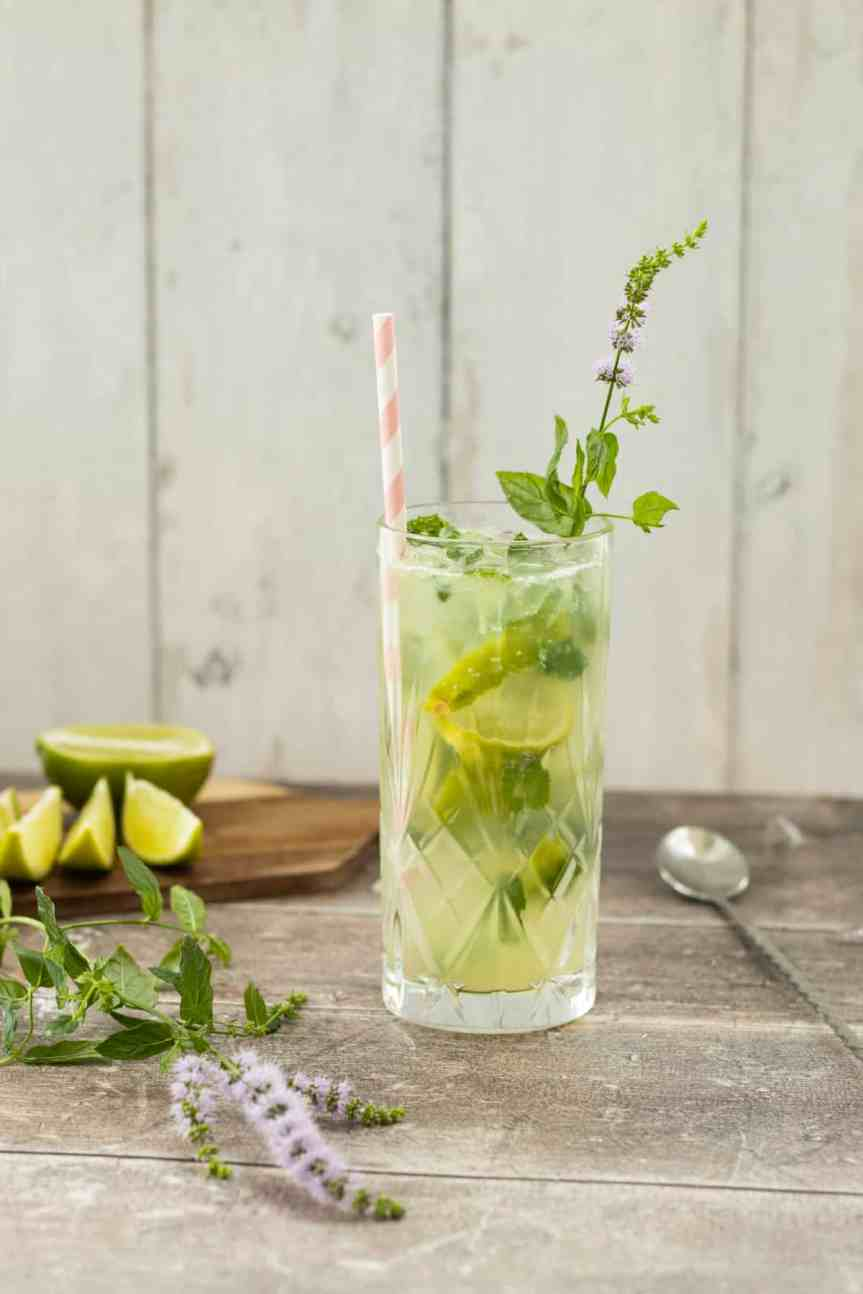 This image has an empty alt attribute; its file name is mojito-mocktail-3.jpg
