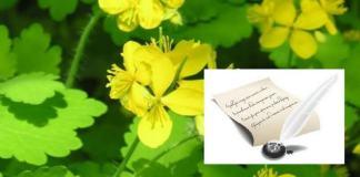 Ziua Internațională a Poeziei poezie si jazz