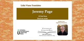 jeremy page if not now lidia vianu