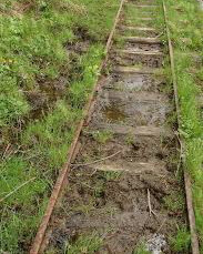 cale ferata buruieni
