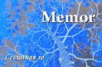 logo rubrica memor daniela sontica leviathan.ro