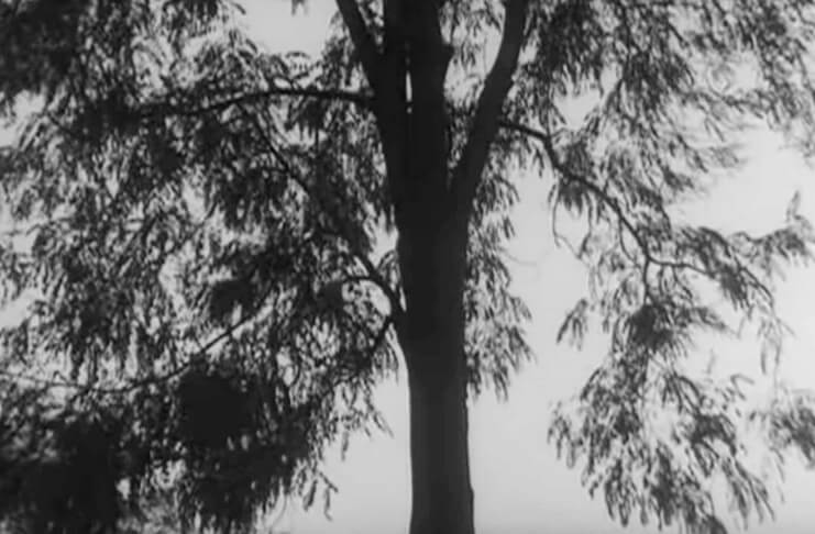 """Imagine din filmul """"Moromeții"""", regia Stere Gulea, 1987"""