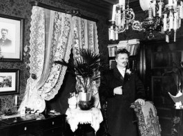 August-Strindberg-salonul-rosu-saloanele-gotice-jurnal-ocult
