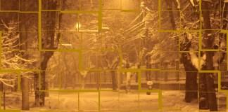 Letiția Vladislav diaspora emigrant proza iarna