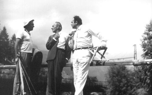 Emil Botta și George Constantin
