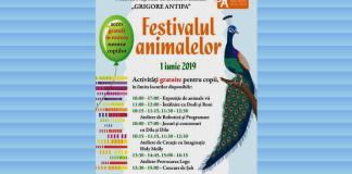 muzeul antipa bucurești 1 iunie 2019