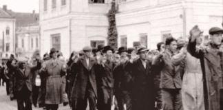 Credit foto: Centrul pentru Studiul Istoriei Evreilor din România