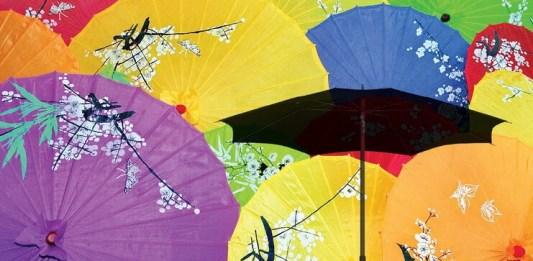 umbrela istoric pusa roth istorii si istorioare