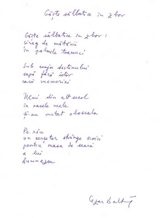 poezie cezar baltag pagini pe furis pusa roth
