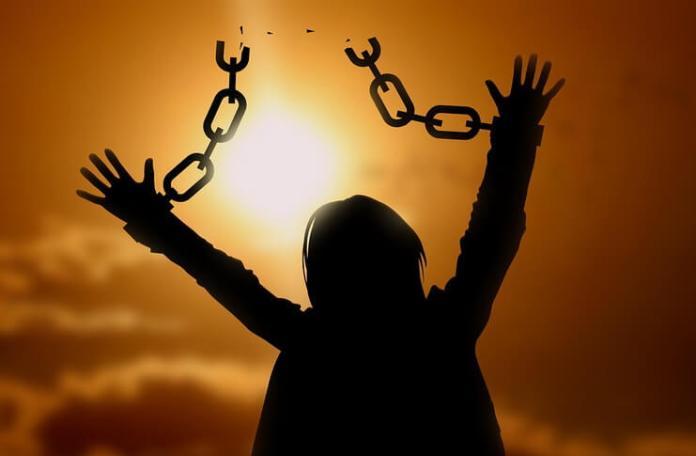 libertate maxime filosofie nicolae lotreanu