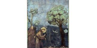 "Giotto, ""Sf. Francisc predicând păsărilor"", Basilica din Assisi"