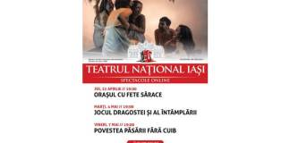spectacole_online_tni (1) (1)