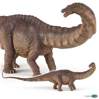 Papo Apatosaurus Dinosaur figure - Papo 55039
