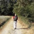 cammino via francigena