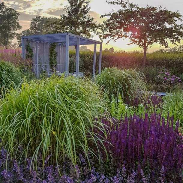 Mysig sittplats under pergola i en lummig trädgård. Trädgårdsdesign av Ulrika Levin, trädgårdsdesigner och trädgårdsarkitekt.