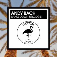 LV Premier - Andy Bach - Shake Down & Boogie [Tropical Disco]