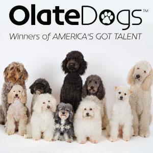 Olate Dogs 300x300