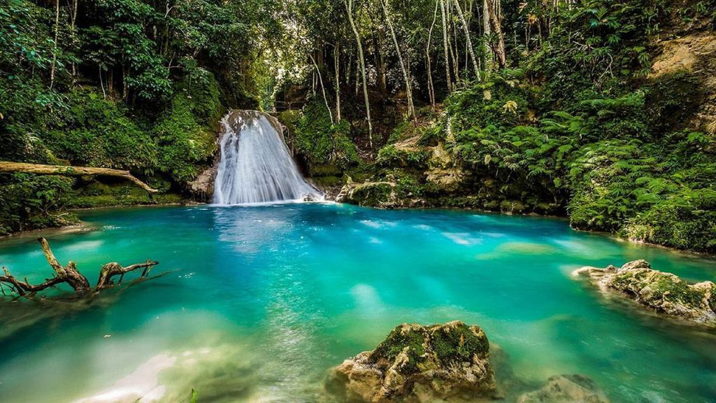La Jamaïque.Article magazine voyage