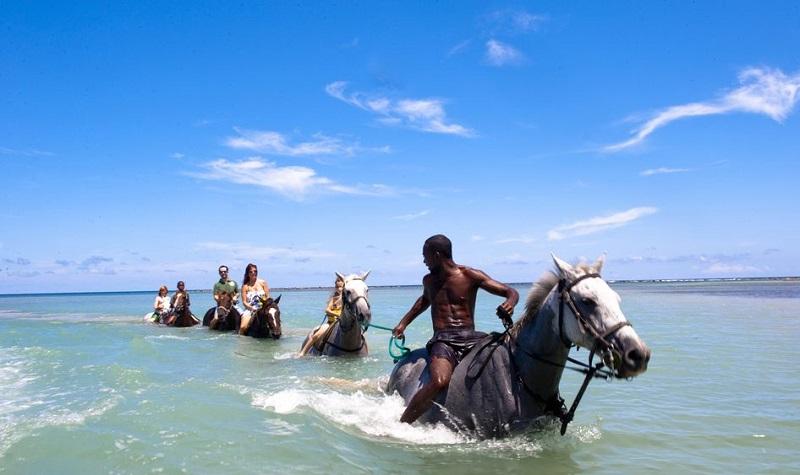 Balades à cheval en Jamaïque