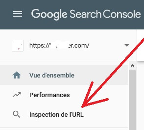 forcer l'indexation de l'URL