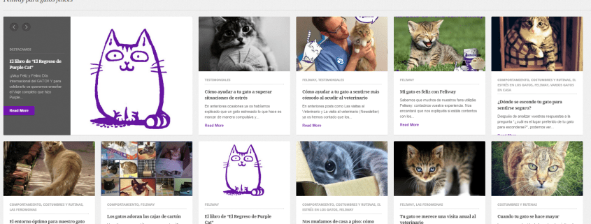 El Blog de Feliway by Lewis & Carroll