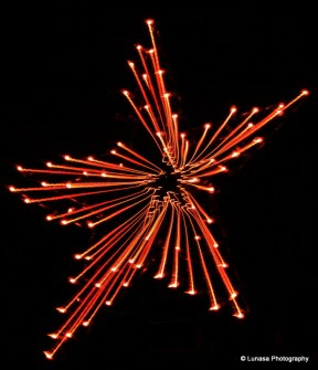 "3-way tie for Color winner=""Fireworks Star"" by Louise Higgins"