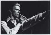 the thin white duke bowie