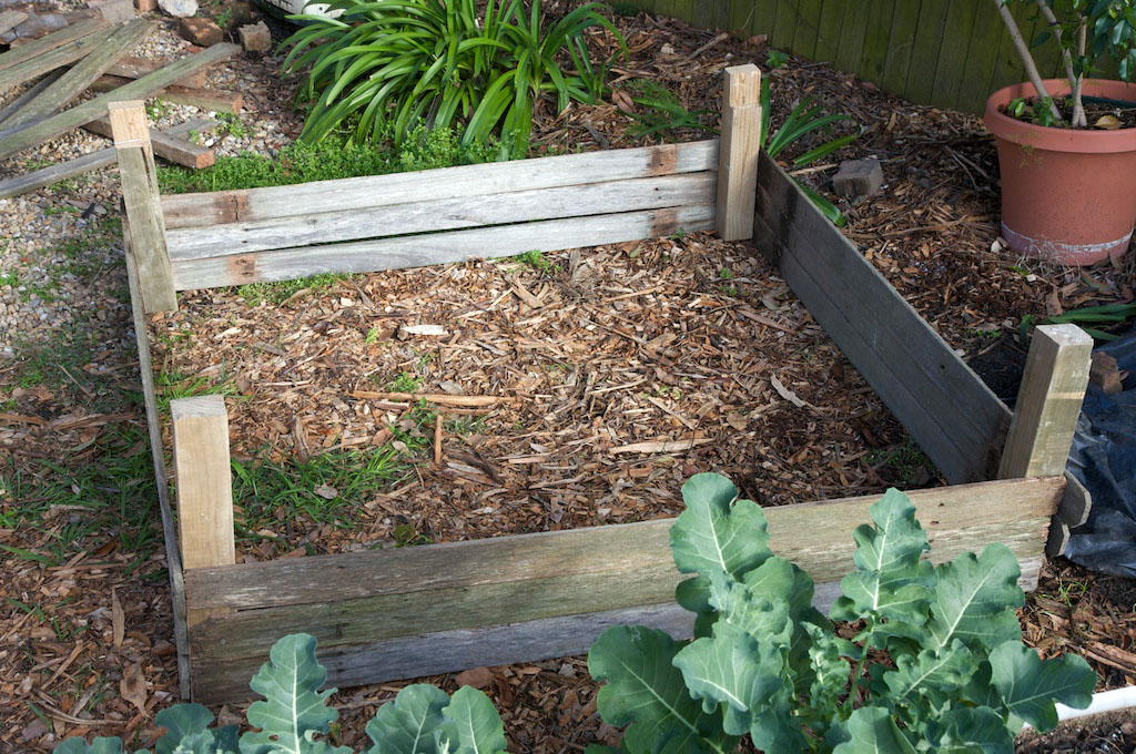 Potato bed made of recycled fence palings, with room for upwards expansion