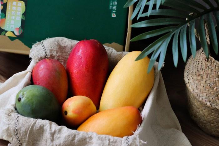 芒果禮盒推薦|產地咬一口芒果小吉盒,一盒吃到六種品種的芒果!