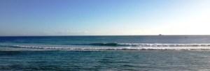 Wed surfing