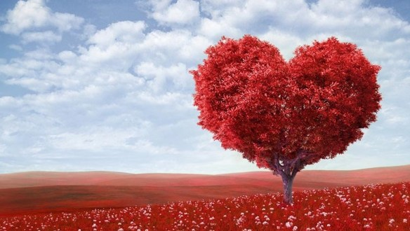 Valentines-Day-funny.jpg