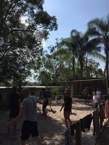 Volleyball 3